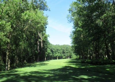 2017 Blackwolf Run Meadow Valleys Course Hole 10 Tee